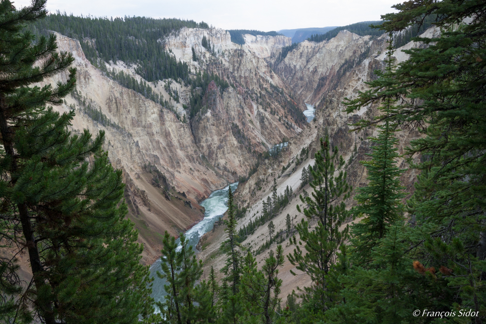 Yellowstone River (Yellowstone N.P.)