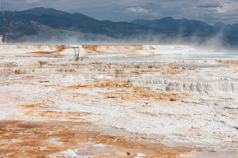 Sources d'eau chaude  - Mammoth Hot Springs