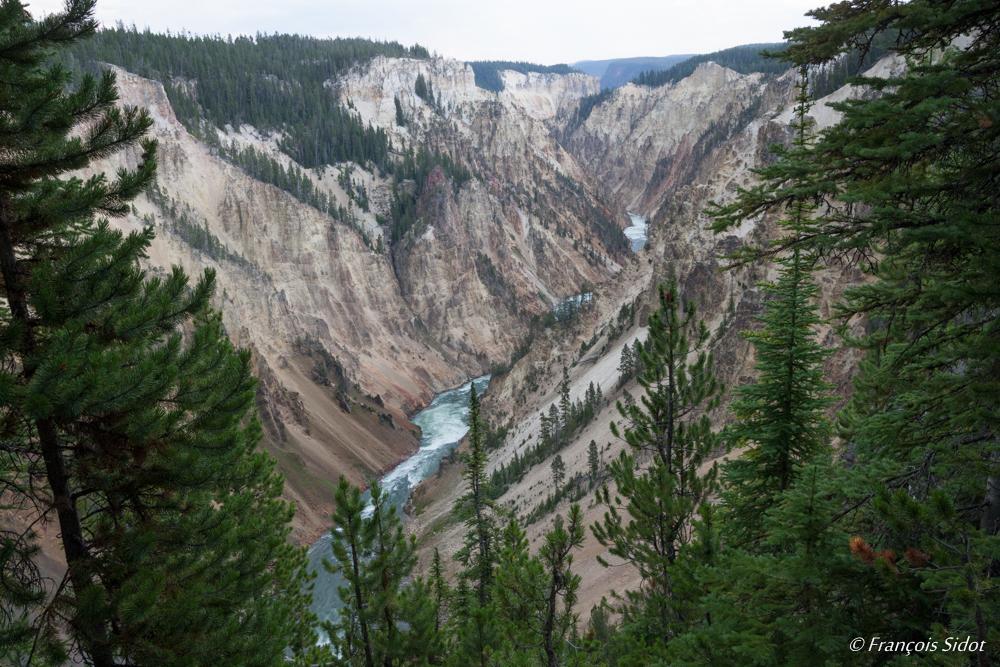 Rivière Yellowstone (P.N. du Yellowstone)