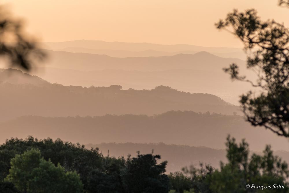 Paysage au crépuscule - Queensland