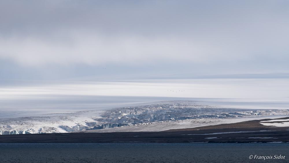 Glacier (Svalbard)