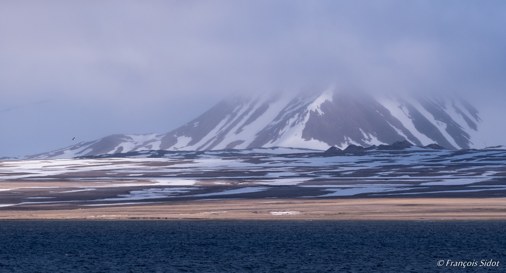 Paysage du Svalbard