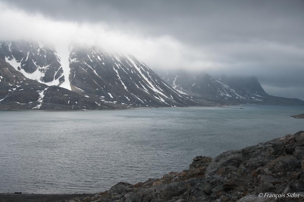 Fjord (Svalbard)